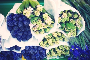 Utrecht-bloemenmarkt-Moijaifaim