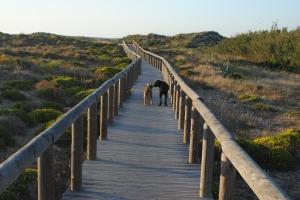 Carrapateira_Portugal_moijaifaim