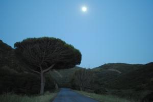 Aljezur_Portugal_Moijaifaim